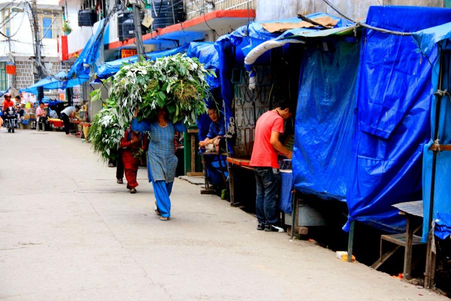 Market at McLeod Ganj, Dharamsala, India