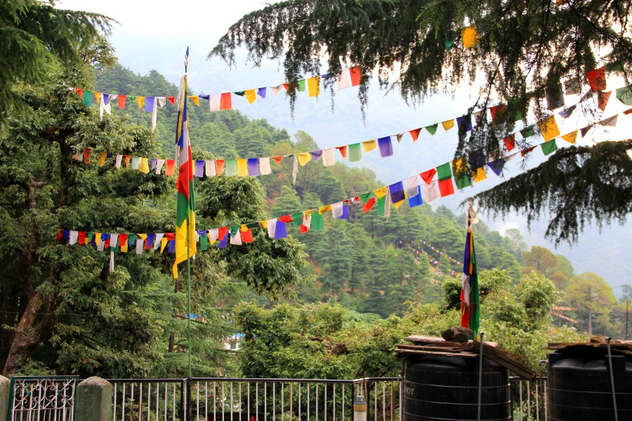 Prayer flags along the way to Tushita Meditation Centre, McLeod Ganj, Dharamsala, India