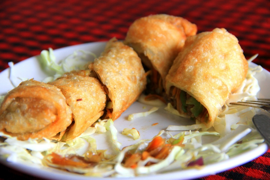 Vegetarian spring roll at Mount View Hotel Restaurant at McLeod Ganj, Dharamsala, India