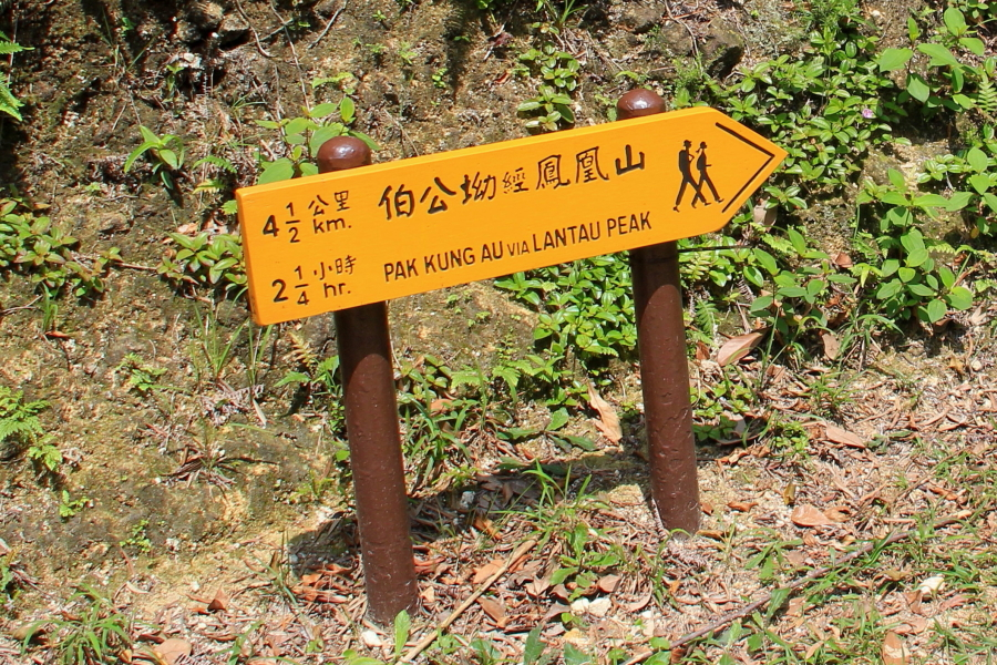 Ngong Ping village, Wisdom Path, Lantau Peak Trail, Hong Kong