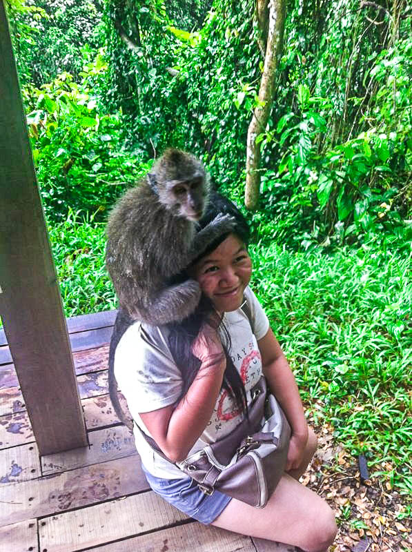 Attacked by monkey when visiting Monkey Forest Ubud, Bali