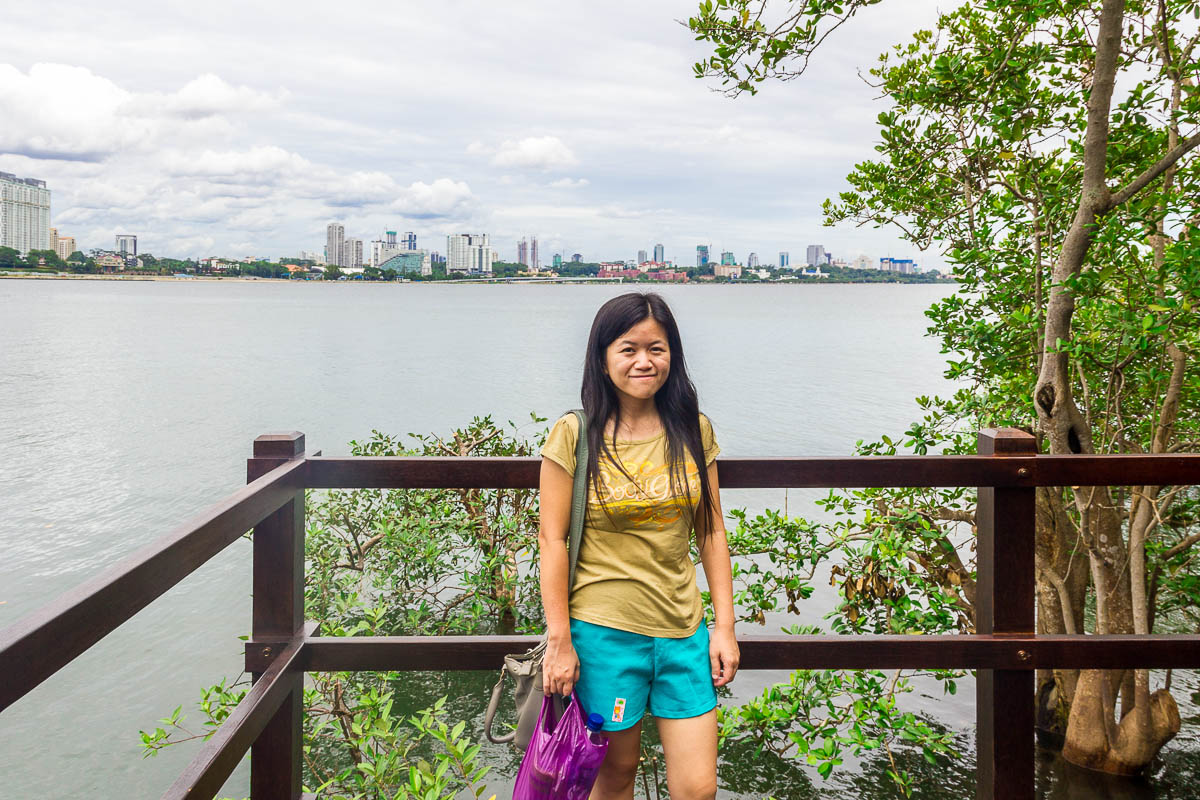 Johor Bahru skyline at Migratory Bird Trail, Sungei Buloh Wetland Reserve, Kranji Countryside, Singapore