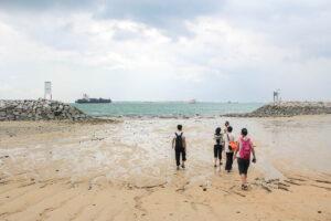 Appreciating Marine Biodiversity at Sisters' Islands Marine Park