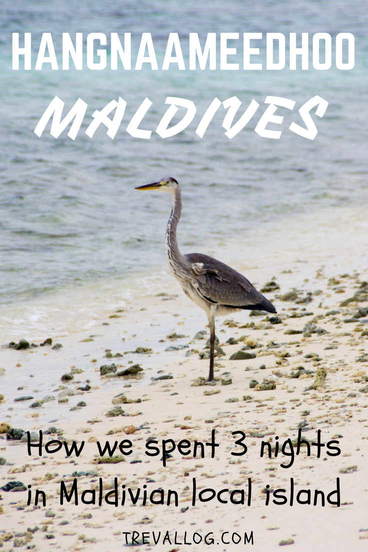 3 days and nights in Hangnaameedhoo, Maldives