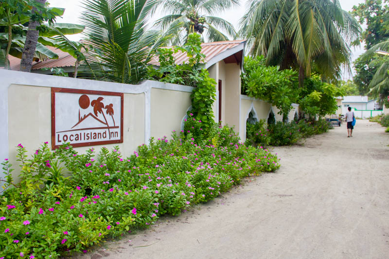 Local Island Inn in Hangnaameedhoo, Maldives
