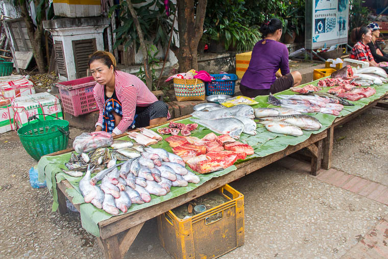 Luang Prabang Morning Market - raw fish