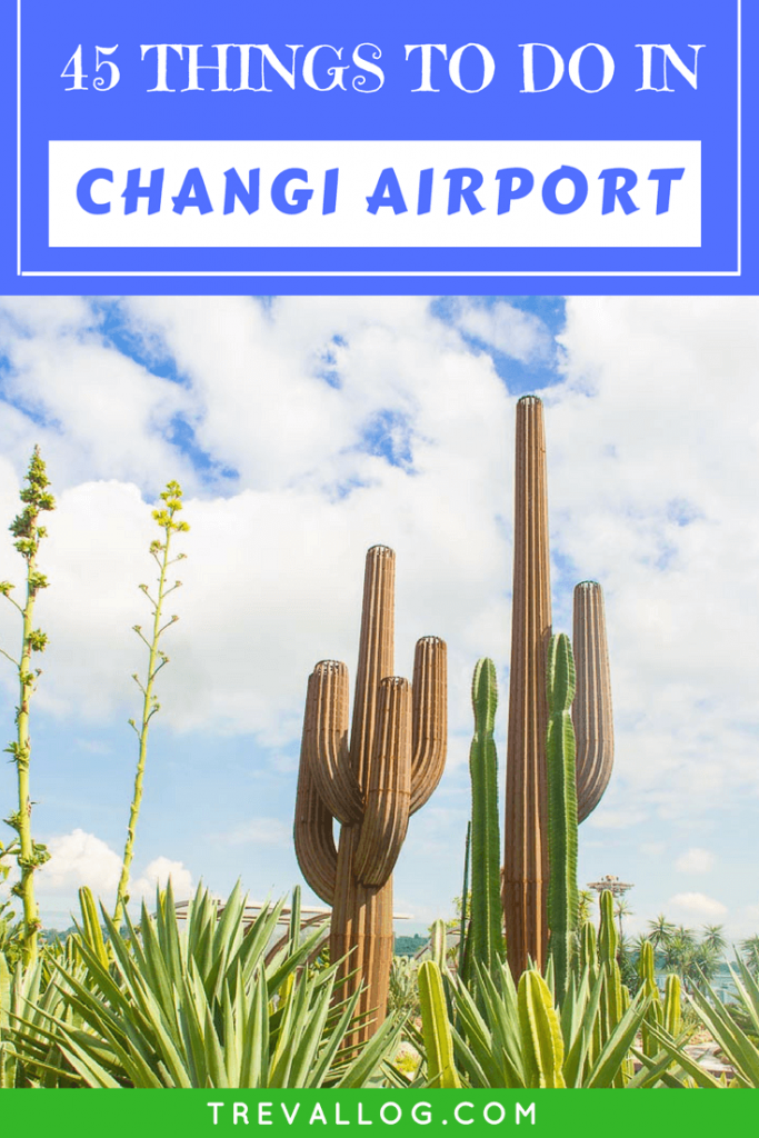 Things to Do in Changi Airport, Singapore