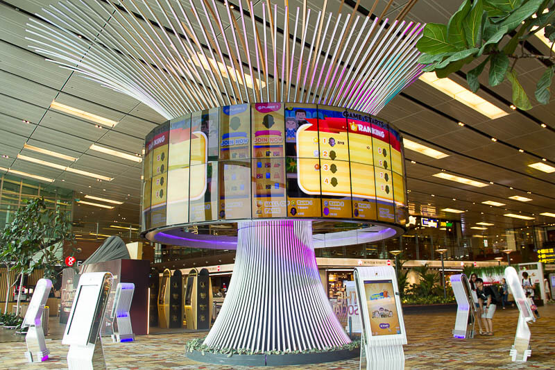 Things to Do in Changi Airport, Singapore - Terminal 1, The Social Tree