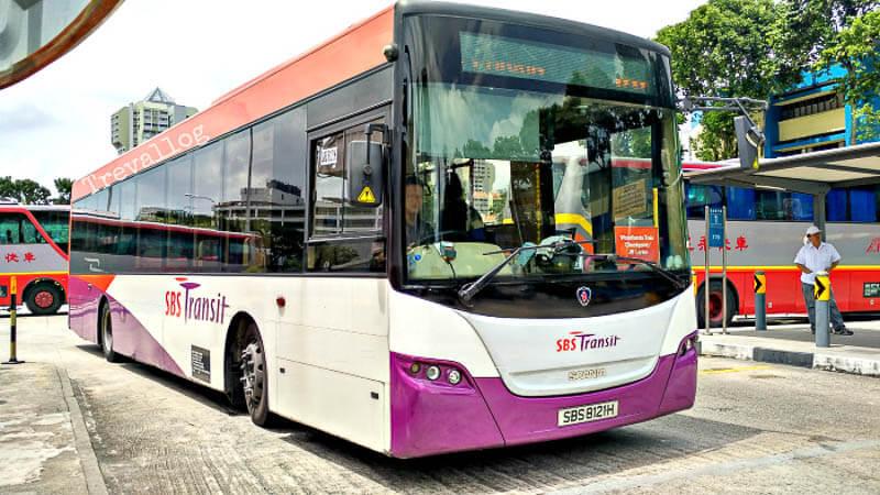 SBS Bus 170 red plate