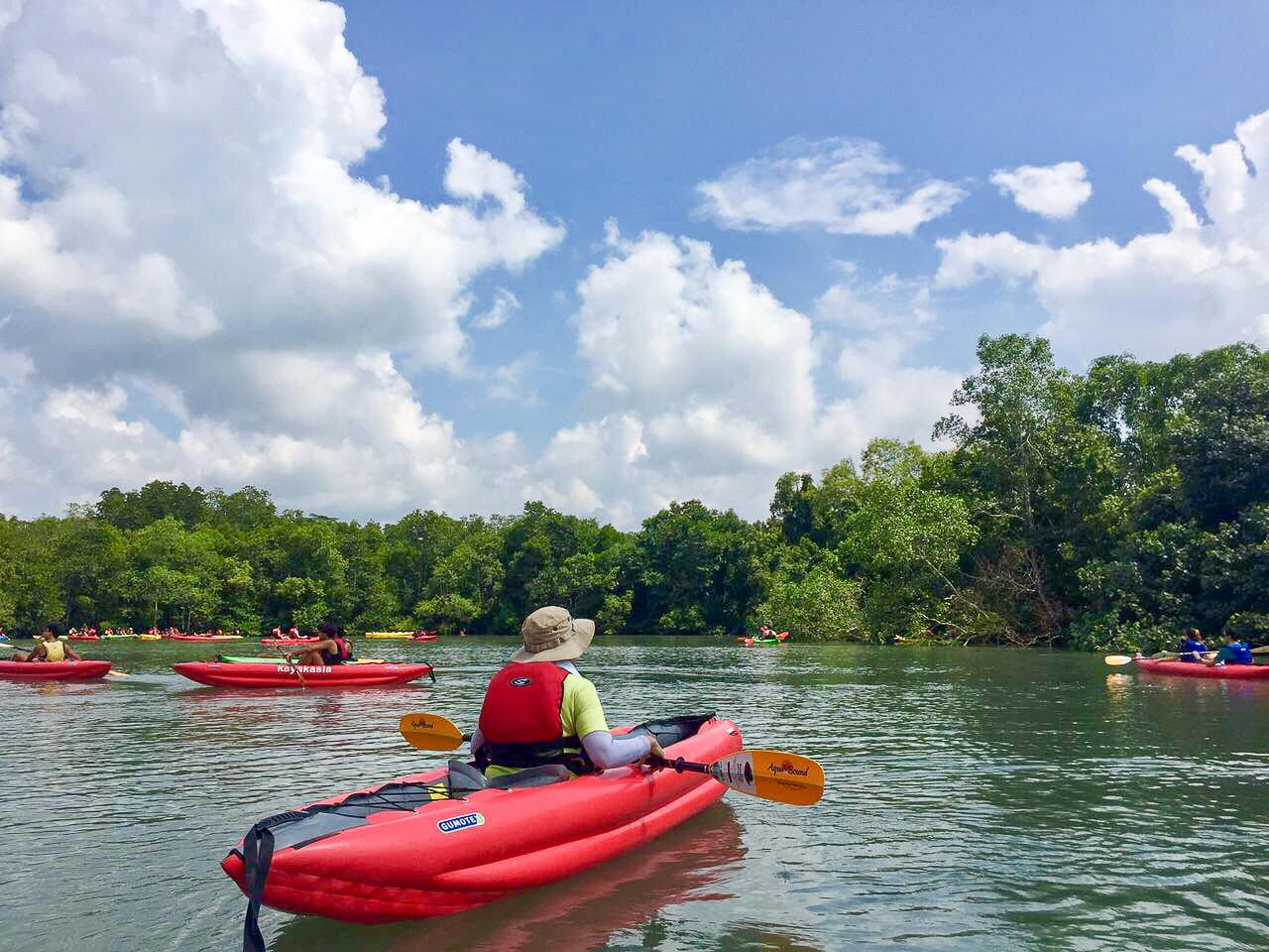 5 Places to Visit in Singapore for Outdoor Adventure Lovers