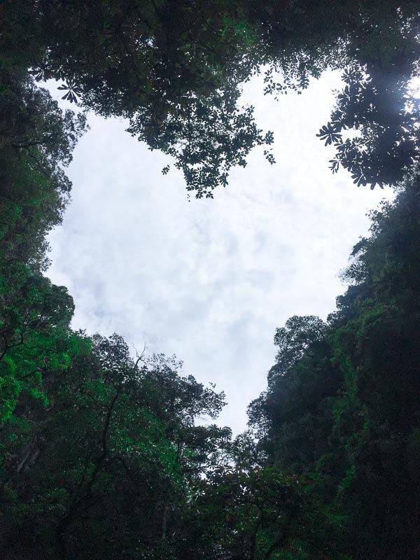 James Bond Island and Phang Nga Bay Tour from Phuket - kayaking