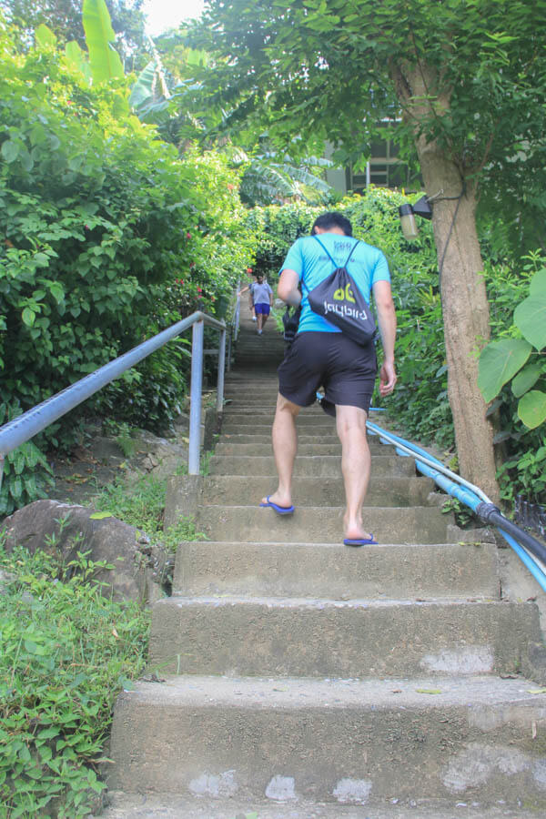 Climbing to Phi Phi Viewpoint - 24 Hours Itinerary in Phi Phi Islands