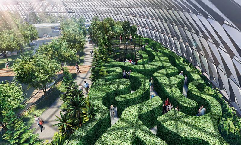 Jewel Changi Airport - Hedge Maze