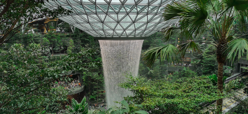 Jewel Changi Airport - Rain Vortex surrounded by Forest Valley