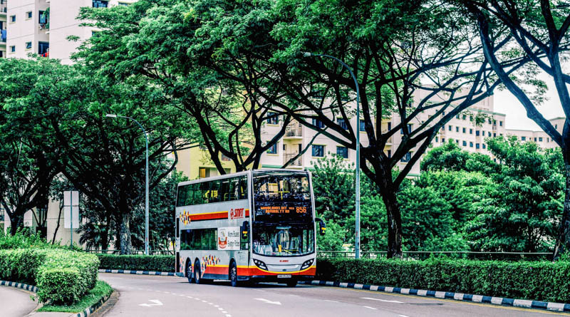 Getting Around Singapore with Bus