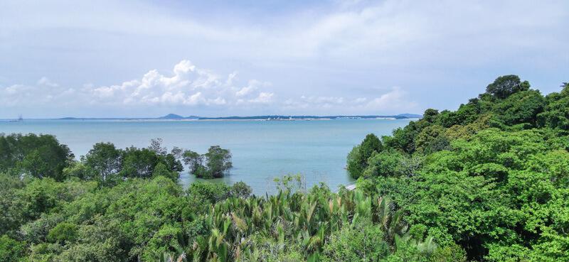 Jejawi Tower view, Chek Jawa
