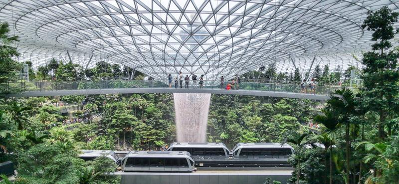 Canopy Bridge - Jewel Canopy Park at Changi Airport Singapore