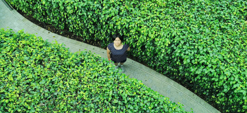 Hedge Maze - Jewel Canopy Park at Changi Airport Singapore
