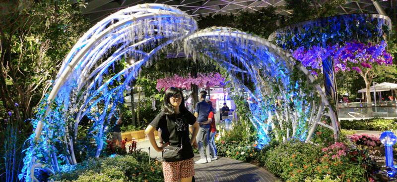 Night view - Jewel Canopy Park at Changi Airport Singapore