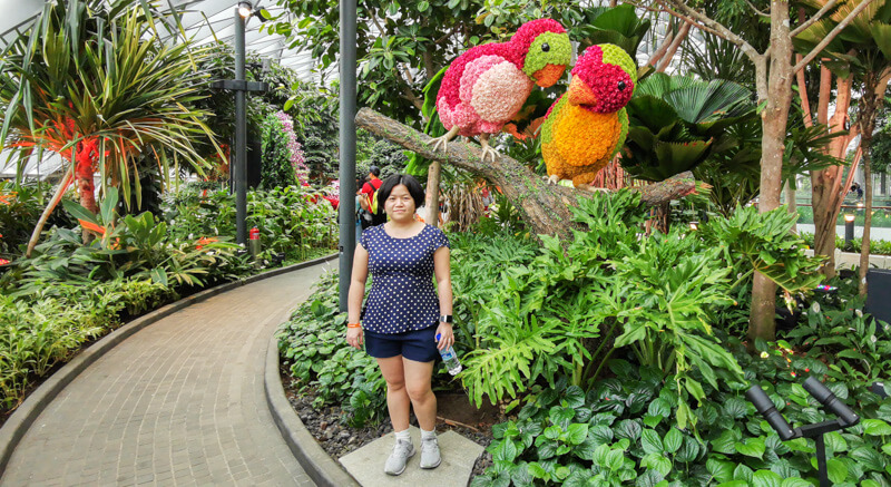 Topiary Walk - Jewel Canopy Park at Changi Airport Singapore