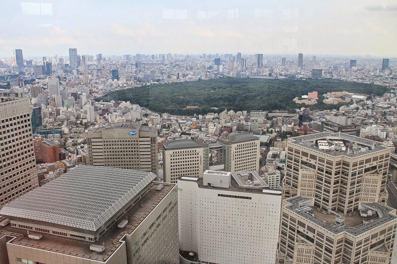 Meiji Shrine, viewed from TMG Building