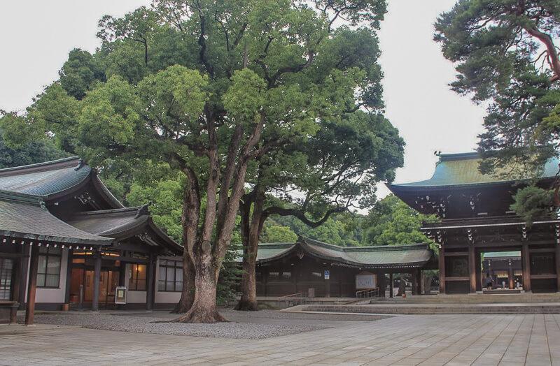 At Meiji Shrine, tokyo, japan