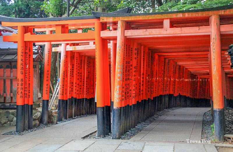 Row of torii gates in Fushimi Inari