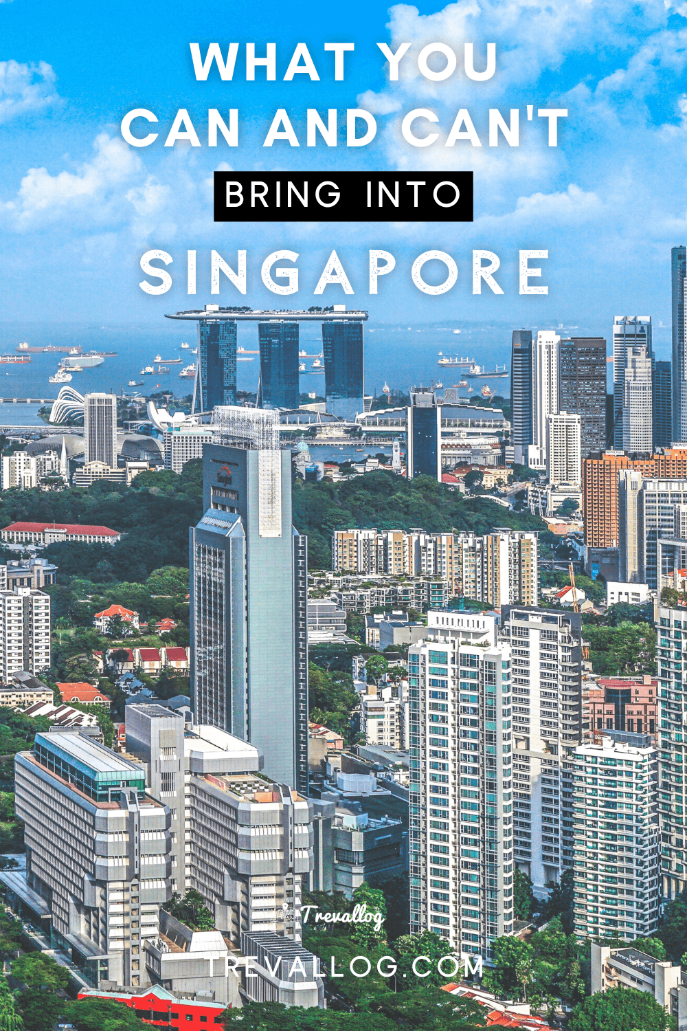 What You Can and Can't Bring into Singapore