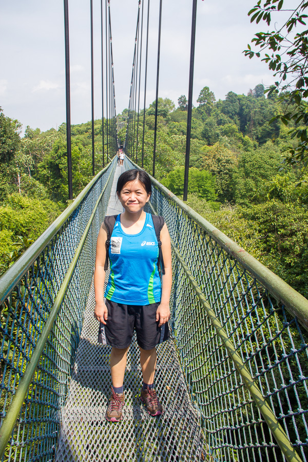 Running at TreeTop Walk MacRitchie Reservoir, Singapore