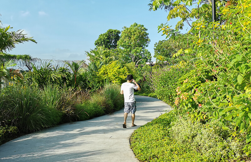 Sembawang Hot Sping Park - Floral Walk