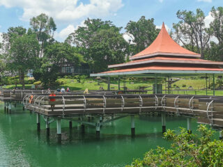 Detailed Guide to Visiting MacRitchie Reservoir