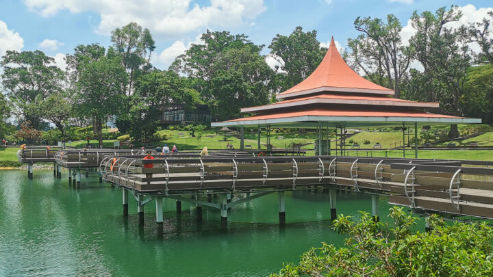 Visiting MacRitchie Reservoir: Everything You Need to Know