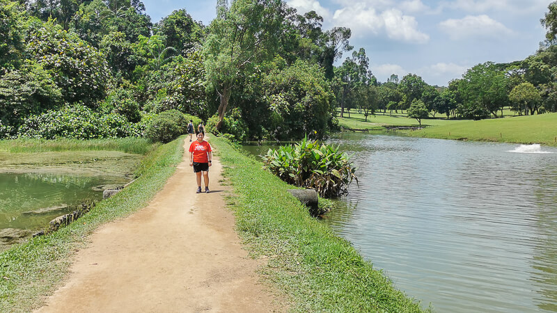 MacRitchie Reservoir - Suggested Route - Full Loop