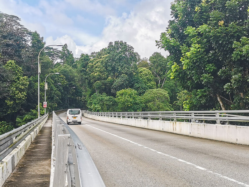 MacRitchie Reservoir - Suggested Route - MacRitchie Reservoir to Bukit Timah Nature Reserve - Rifle Range Road (1)