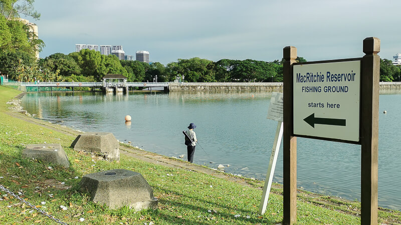 Things to do in MacRitchie Reservoir - Fishing Ground