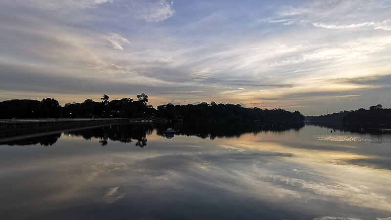 Things to do in MacRitchie Reservoir - Watch Sunset