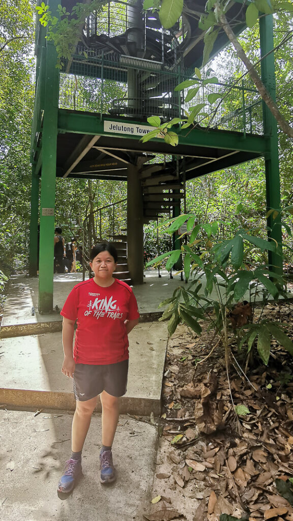 Things to do in MacRitchie Reservoir - 4a. Jelutong Tower