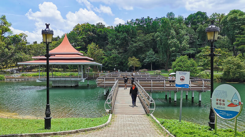 Things to do in MacRitchie Reservoir - 5a. Zigzag bridge