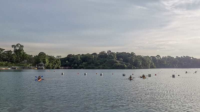 Things to do in MacRitchie Reservoir - Kayaking