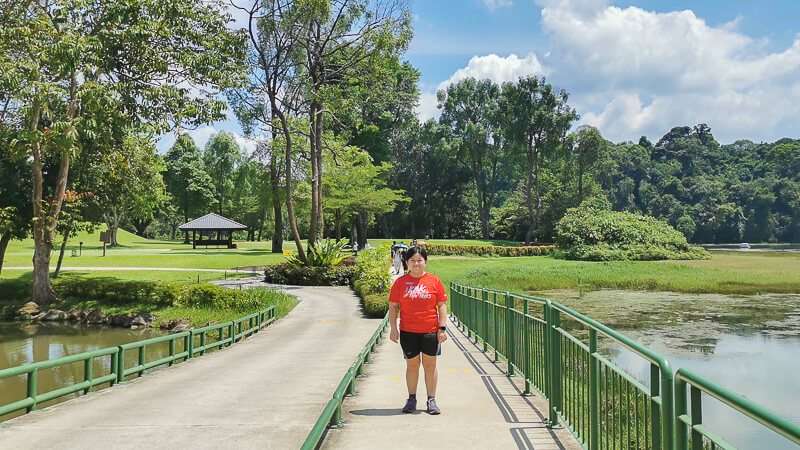 Trails of MacRitchie Reservoir - Golf Link